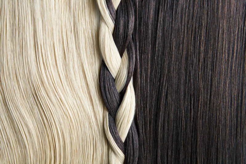 Still life of blond and brown hair, braided.