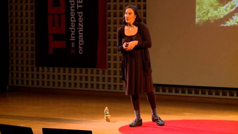 TANJA HOLLANDER – ARTISTA. EMPREENDEDORA.
